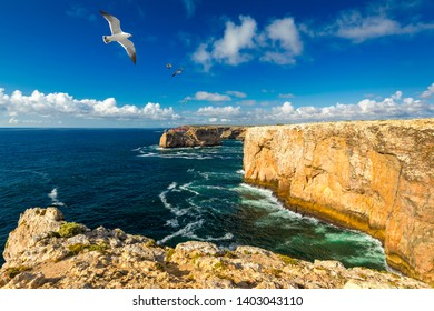 Portuguese coast, cliff into the Atlantic Ocean. Taken in Sagres, Faro, Algarve, Portugal. Beautiful coast of Portugal, Sagres. Seagulls flying over the coast of Algarve, Sagres, Portugal.