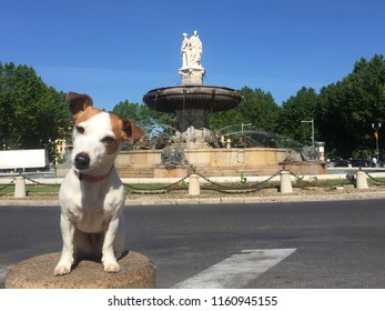 Pose in front of the fountain of Aix en Provence, France