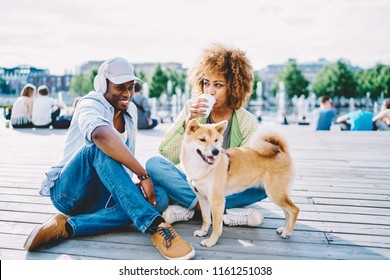 Positive dark skinned couple in love dressed in casual wear having fun and spending free time together with dog in urban setting.Cheerful african american young man and woman drinking coffee to go