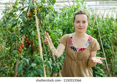 Positive female horticulturist  standing near tomatoes seedlings in  hothouse