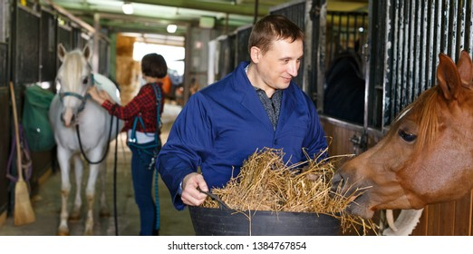 Positive male horse farm worker feeding horse with hay at stable