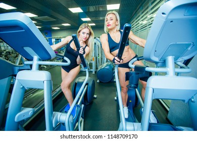 Positive two female friends training on elliptical trainers in fitness club, lifestyle concept. cardio training, fat burning, weight loss