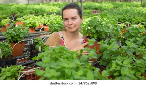 Positive woman gardener working in hothouse cultivating organic mint