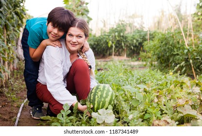 Positive woman  horticulturist  with boy picking  melon  together  in greenhouse