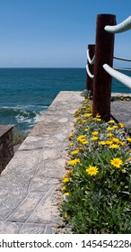 Post & rope with yellow flowers and ocean view. Taken in Praia Das Macas, Portugal