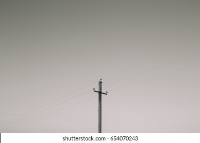 post which hold the electric wires. power lines on blue sky background. picture for your desktop and label in different font