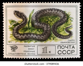 Thematics 100 Different Reptiles Stamps Fashionable In Style;