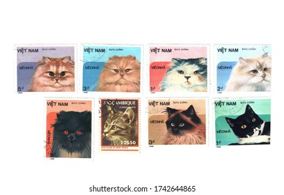 Postage stamps with the image of cats in 1986, laid out on a white background. Stamps can be redeemed, different categories and prices, different countries of Mozambique and Vietnam. The concept of ph
