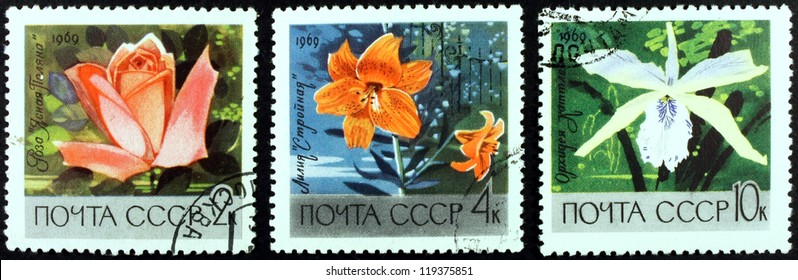 Postage stamps of the Soviet Union, nature, flowers , 1969