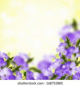 Postcard with fresh flowers. Abstract background for design.