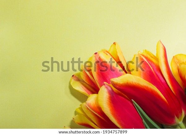 postcard-spring-holiday-light-green-600w