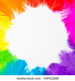 Poster for the Brazilian carnival. A circle, a wreath of feathers. White background. Isolated.