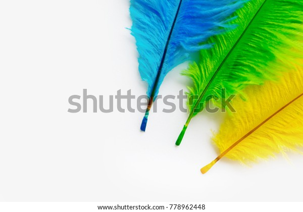 fc8043a2 Poster Carnival Bright Festive Feathers Color Stock Photo (Edit Now ...