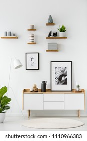 Poster on wooden cupboard in white living room interior with plant and round rug. Real photo