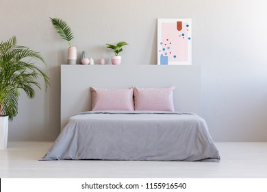 Poster and plants on bedhead of bed with pink cushions in grey bedroom interior. Real photo with a place for your nightstand