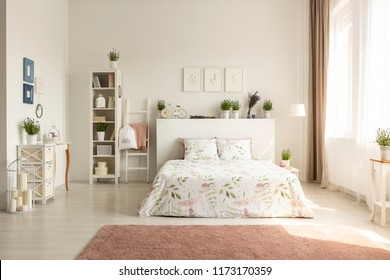 Posters above bedhead with plants in spacious bedroom interior with bed and pink carpet. Real photo