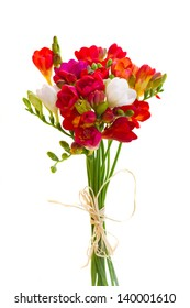 posy of red freesia flowers isolated on white background