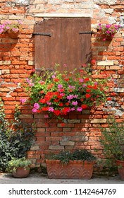 pot of geraniums flowers and wall with red bricks and old window