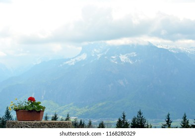 A pot of geraniums rests on a stone ledge. The tops of some pine trees are visible. Across a green valley are some snow-topped mountains, surrounded by white clouds.
