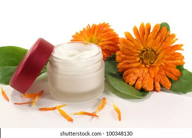a pot marigold salve with fresh blossoms