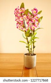 A Pot of pink Dendrobium Nobile on a wooden table.