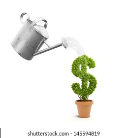 A pot plant shaped like a dollar sign and a watering can
