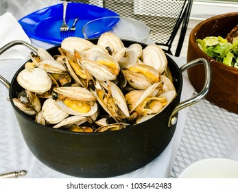 A pot of steamer clams, soft-shell clams common in New England.
