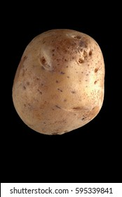 potato isolated on the black