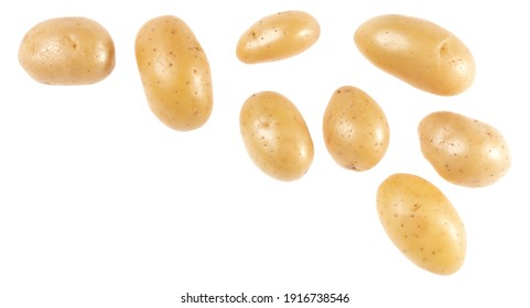 Potato isolated over white background with copy space for your text. Top view. Flat lay pattern. Potatoes in air, without shadow.