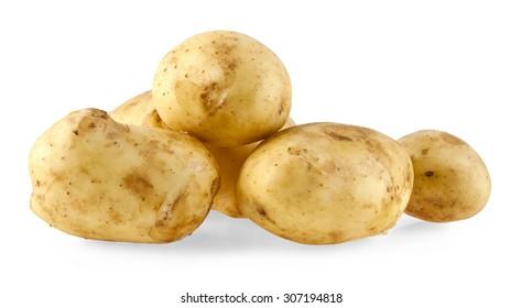 potato on a white background