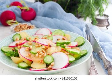 Potato salad with fresh cucumber and radish, horizontal