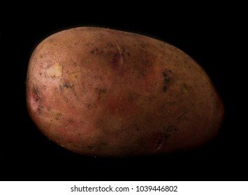 Potato tuber, isolated on a black background