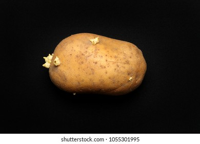 Potato tuber, isolated on a black background.