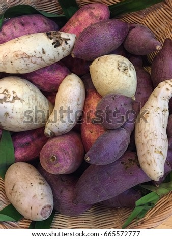 Potatoes Come Variety Skin Flesh Colors Stock Photo (Edit Now ...