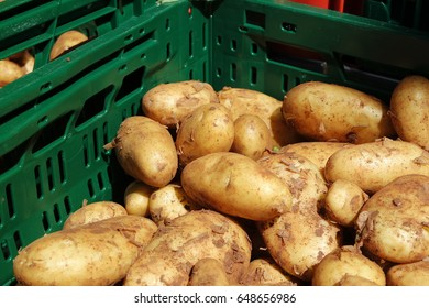 Potatoes at farmer market