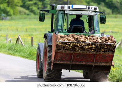 potatoes on a tractor