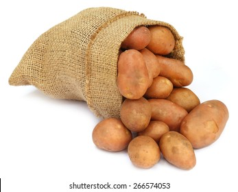 Potatoes In A Sack Bag Over White Background