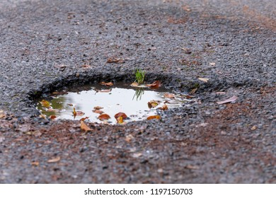 A pothole in the asphalt
