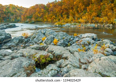 Potomac River, Virginia, USA-October 25, 2009. Potomac river with rocks and autumnal trees with colored leaves.