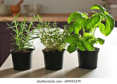 Pots with basil, thyme and rosemary on table