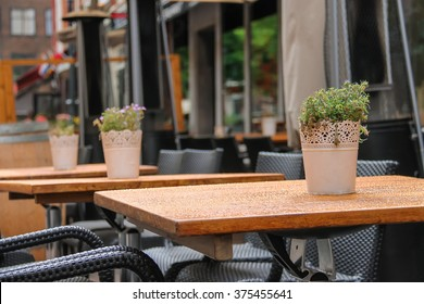 Pots with decorative plants on the tables of outdoor street cafe