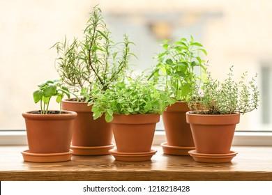 Pots with fresh aromatic herbs on wooden windowsill