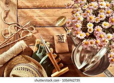Potted pink daises, assorted gardening tools, watering can and straw sunhat on a rustic wood background with copy space viewed from above