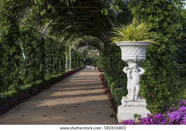 potted plants, archway in a garden