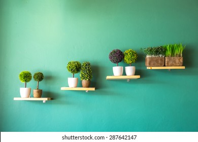 Potted Plants on green wall