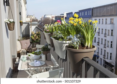 potted spring flowers on a sunny balcony