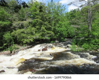 Pottersville, NY / USA - June  1, 2019:  Creek rushing over large rocks in the Adirondack Mountain forest.