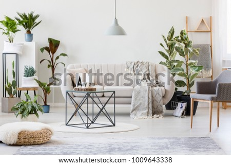Pouf And Grey Armchair In Botanic Living Room Interior With Beige Sofa Near  Plants And Table