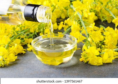 Pouring canola oil into the glass bowl against rapeseed blossoms on the grey surface, closeup shot