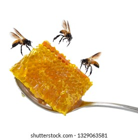 Pouring honey on a spoon.